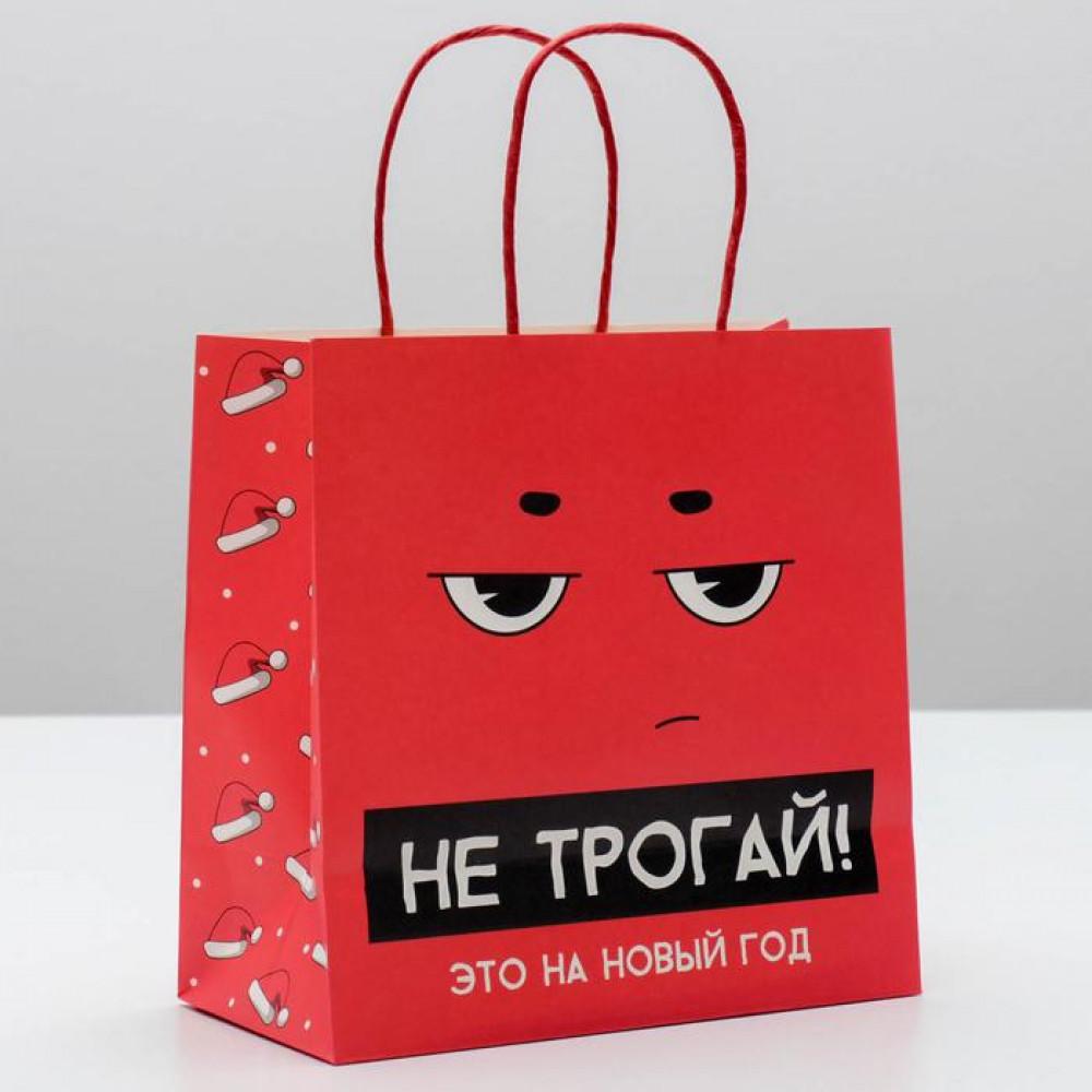 Пакет новогодний «Не трогай, это на новый год» 22 × 22 × 11 см