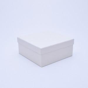Белая коробка с крышкой 25х25х10