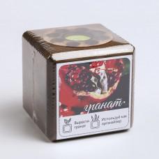 ЭкоКуб burn для выращивания мультибокс «Гранат»