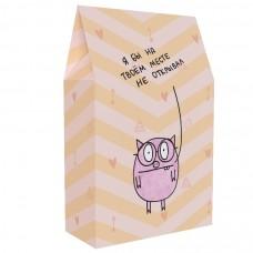 Подарочная коробка «Я бы на твоём месте не открывал»