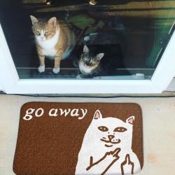 Коврик в прихожую Go away
