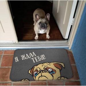 Коврик для входной двери Я ждал тебя