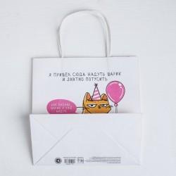 Пакет подарочный «Я пришел сюда надуть шарик», 22 × 22 × 11 см