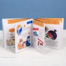 Книжка - открытка «Правила жизни нищеброда»