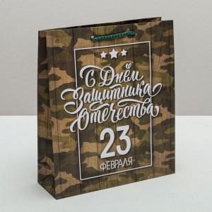 Пакет «С днём Защитника Отечества, 23 февраля» ML 23 × 27 × 8 см