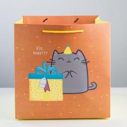 Пакет квадратный «Котик и тортик», 30 × 30 × 30 см