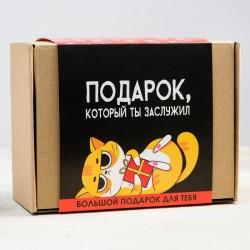 Подарочный набор «Подарок который ты заслужил»