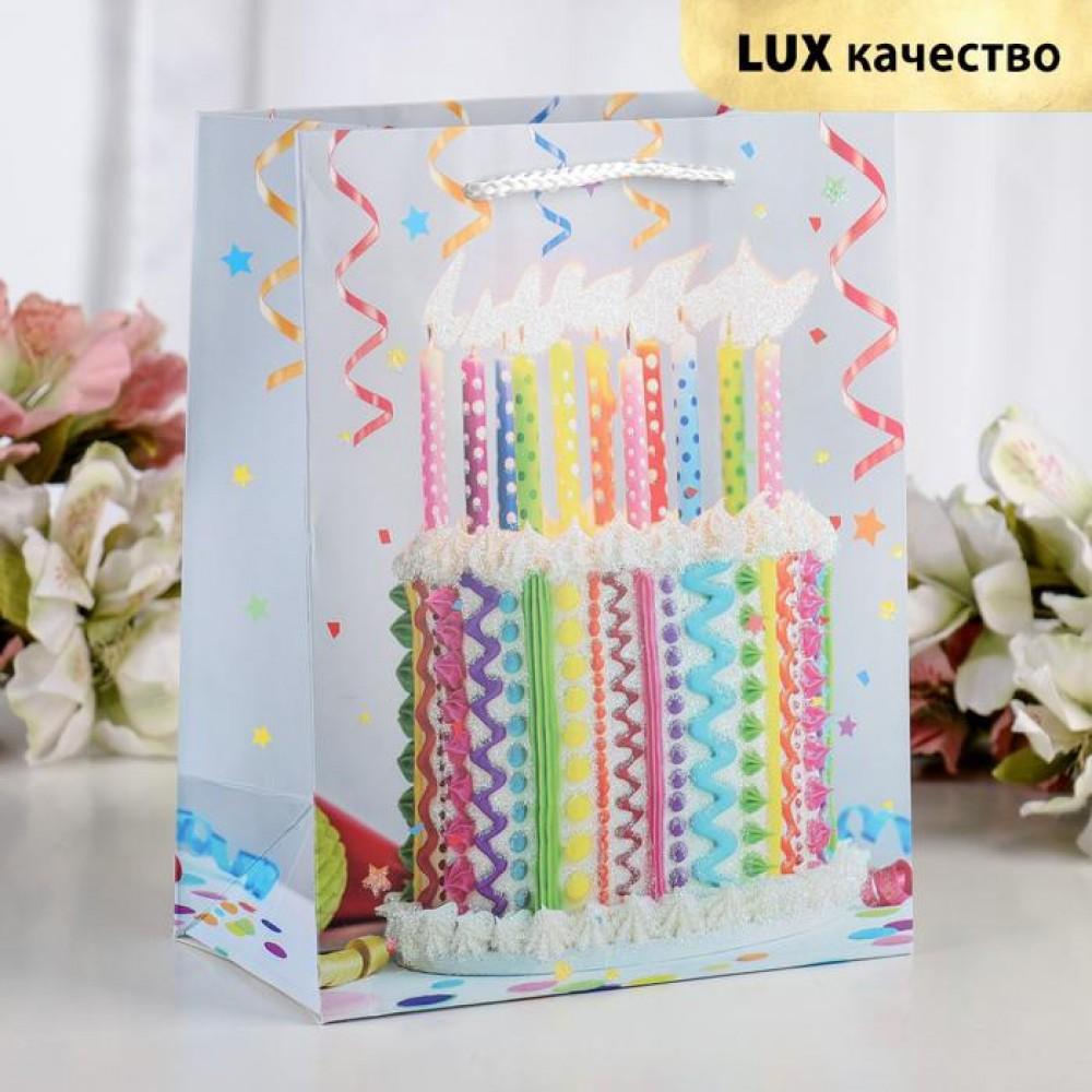 Пакет подарочный «Торт и свечи» 18 х 8 х 23 см