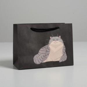 Пакет подарочный Keep calm and Mrrr 14 × 19 × 8 см