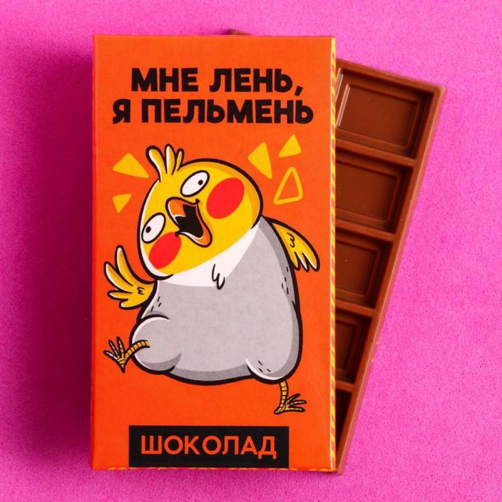 Шоколад молочный «Мне лень я пельмень»: 27 г.