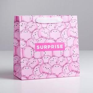 Пакет подарочный с котиками Surprise 22 × 22 × 11 см